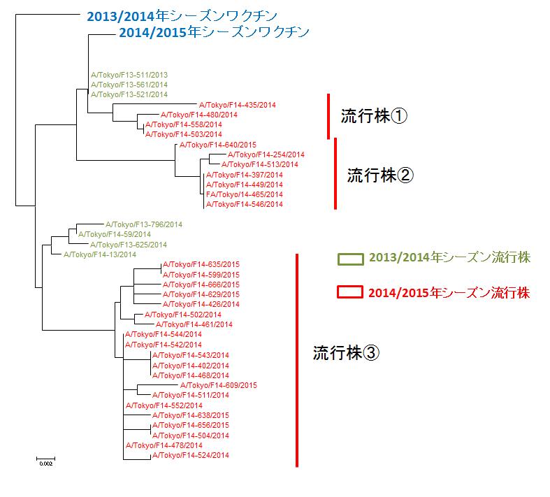 東京都におけるAH3亜型インフルエンザウイルスのHA遺伝子系統樹
